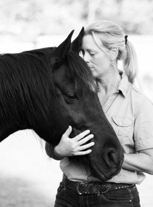 are horses therapeutic