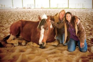 Horse Therapy Programs